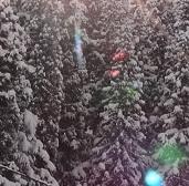 舞子スノーリゾート