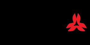 logo_120_60_dva_appareil_recherche_victime_avalanche_arva_equipement (1)