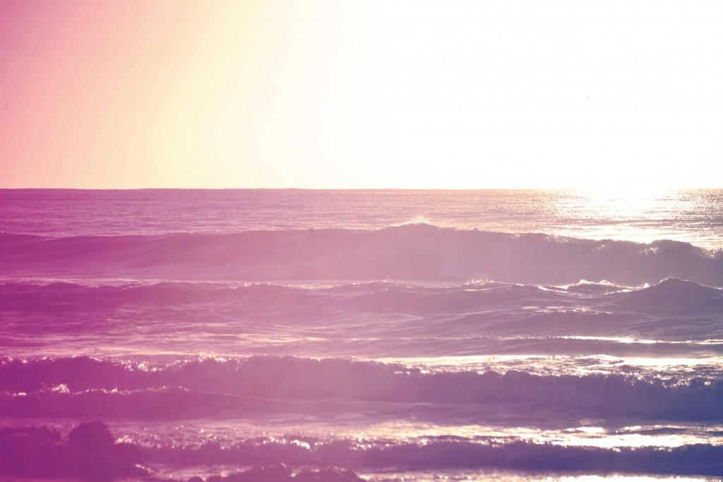 サーフィン 季節